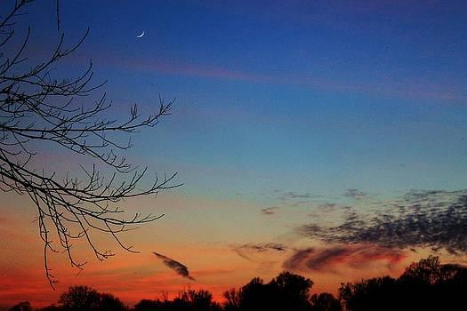 New Moon at Sunset by Alina Skye