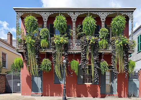 Christine Till - New Orleans City Jungle