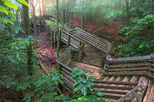 Mary Almond - New River Gorge NR Boardwalk
