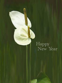 Usha Shantharam - New Year Card - white anthurium