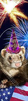 Jeanette K - New Year Ferret # 511