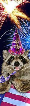 Jeanette K - New Year Raccoon # 519