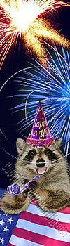 Jeanette K - New Year Raccoon # 520