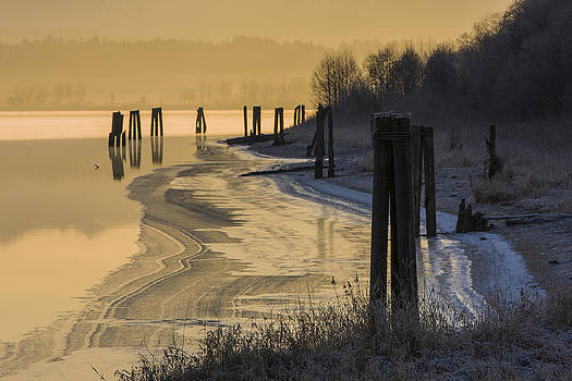 New Years Day by Phil Dyer