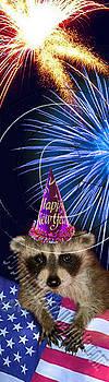 Jeanette K - New Years Raccoon # 516