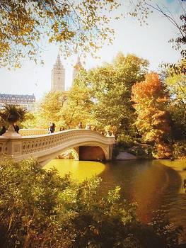New York Autumn - Central Park - Bow Bridge by Vivienne Gucwa