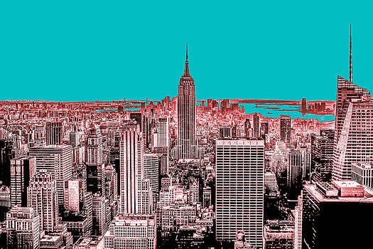New York Delineated by Matthias Flynn