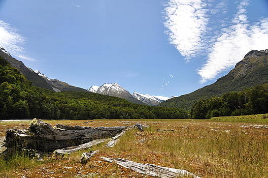 New Zealand landscape by Tomas Mahring