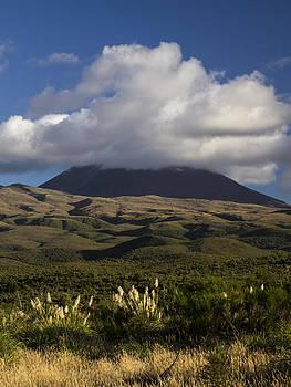 New Zealand Tongariro National Park by Photographos ORG