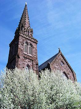 Ramunas Bruzas - Newport In Blossom
