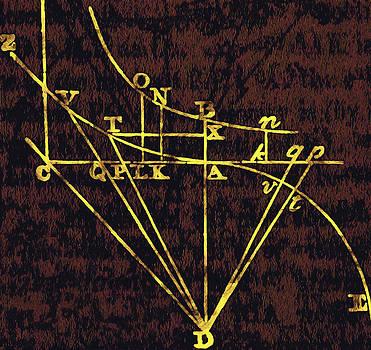 Newton altered by Mark Van Norman