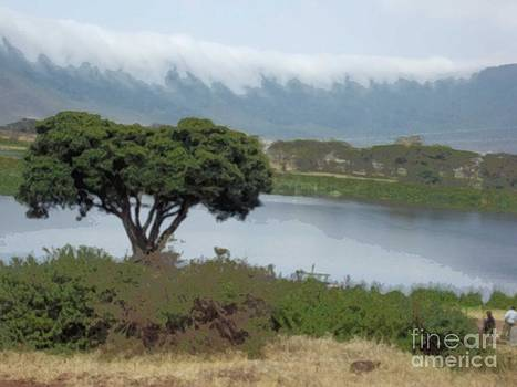 Ngorongoro Crater by Terri Johnson