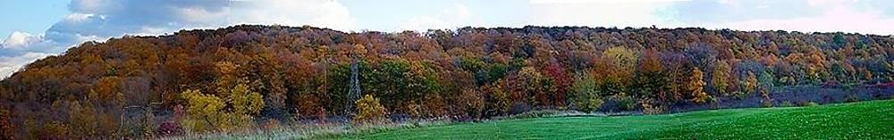 Niagara Escarpment in Fall by Jim Koniar