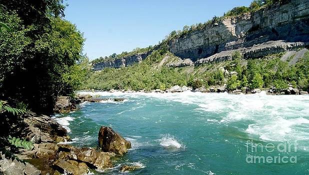 Gail Matthews - Niagara Falls Rapids