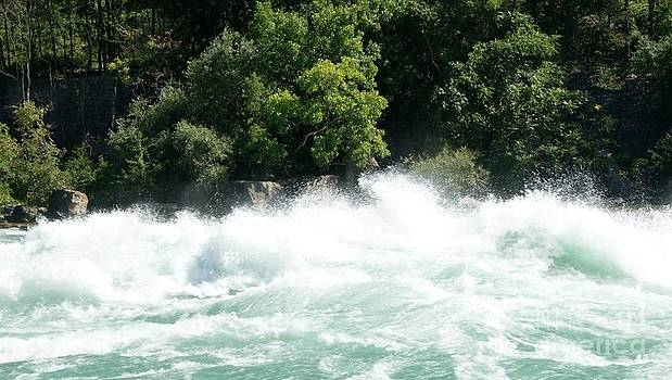 Gail Matthews - Niagara Falls Rapids Whirlpool