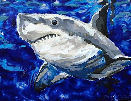 Nice Shark by Sarah Taylor Ko