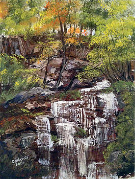 Nice waterfall in the forest by Dorothy Maier