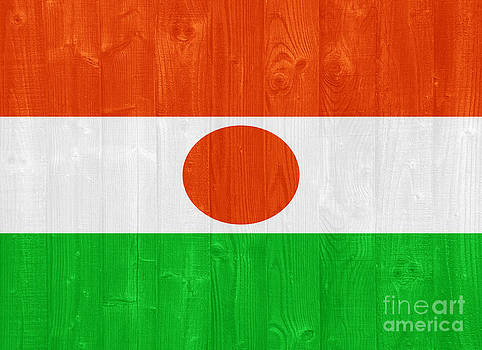 Niger flag by Luis Alvarenga