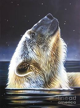 Nigh Star by Sandi Baker