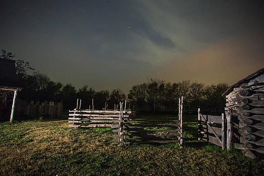 Bonnie Davidson - Night Fence
