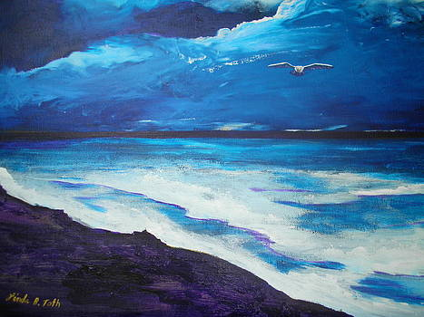 Night Flight by Linda Bright Toth