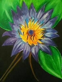 Night Flower by Tiffany  Rios