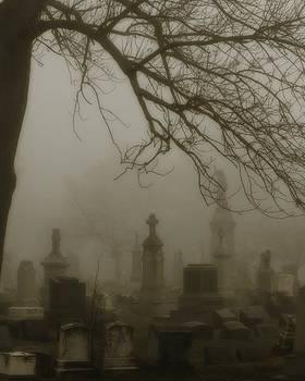 Gothicrow Images - Dark Rolling Night Fog