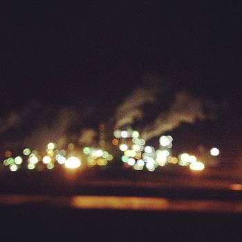 Night Industry by Rebecca Guss