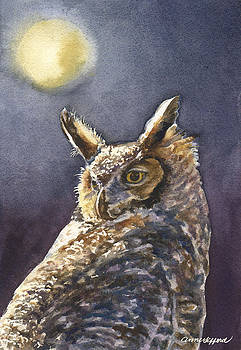 Anne Gifford - Night Owl