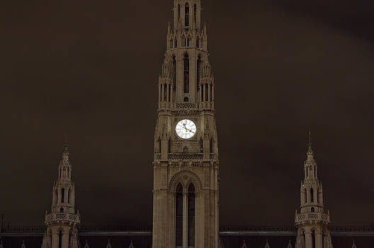 Night Rathaus by Viacheslav Savitskiy