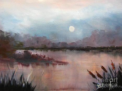Night Shades by Barbara Haviland
