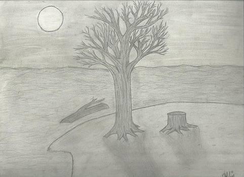 Night Sketch by Saleem Baig
