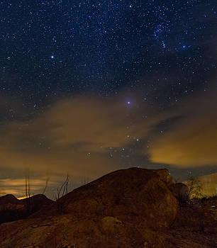 Night Sky by Beverly Parks