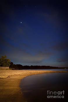 Lisa McStamp - Night Stroll