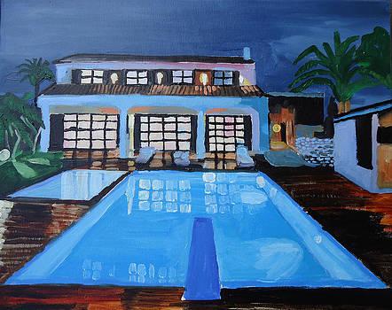 Night Swim by Henry Beer