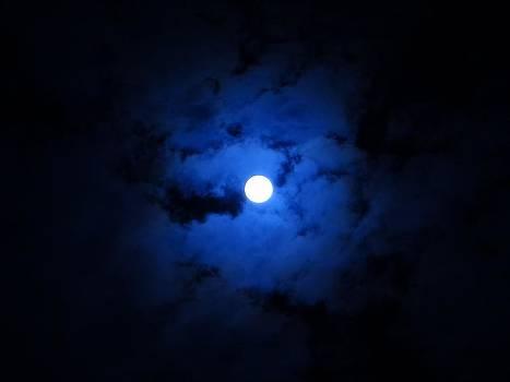 Night Vision by Jamie Johnson