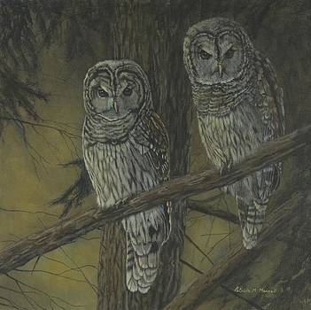 NIGHT WATCH - Barred Owls by Patricia Mansell