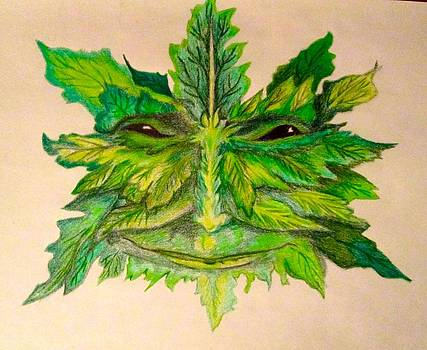 Nikki s Leaf Man by R W Goetting