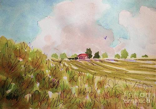 Nimbus Clouds And Farm by Suzanne McKay