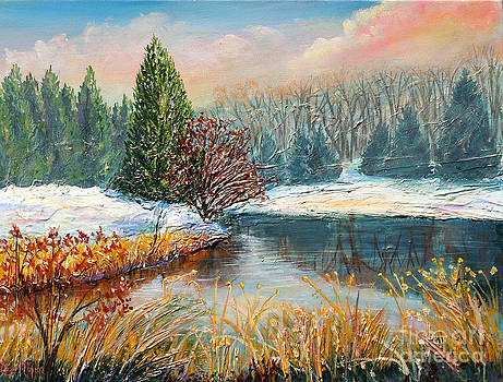 Nixon's Colorful Winter View of Gregg's Pond by Lee Nixon