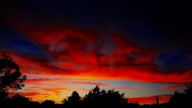 NM Sunset with Trees by Frederick R