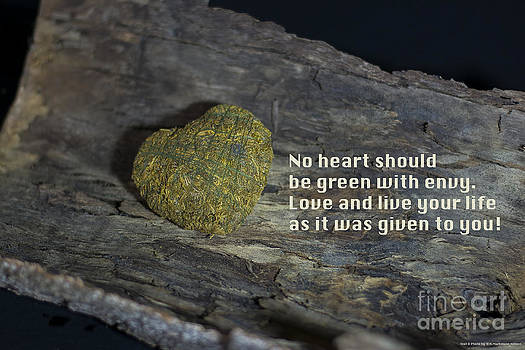 No heart should be green with envy by Nicole Markmann Nelson