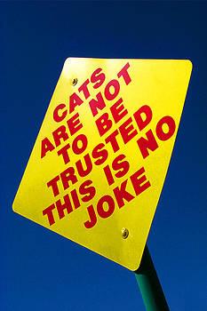 No Joke by Keith May
