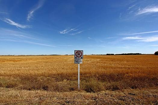 No Parking On The Prairies by Jonathan Edwards - Corvidae Studio Photos