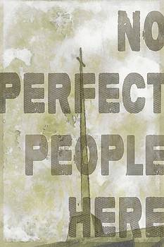 Michelle Greene Wheeler - No Perfect People