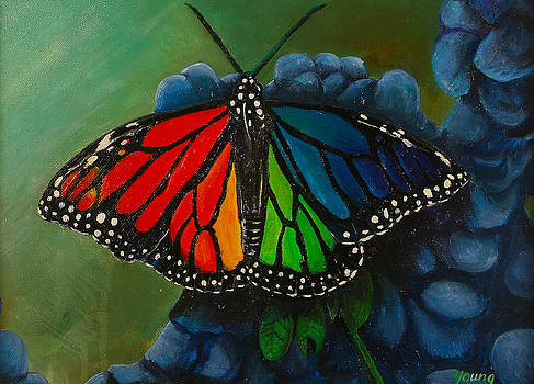 Noah's Butterfly by Matthew Young