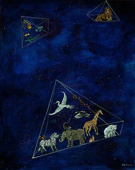 Noah's Last Voyage by Susan Culver