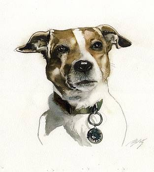 Alfred Ng - noble jack Russell