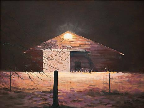 Nocturnal Barn by Rebecca Matthews