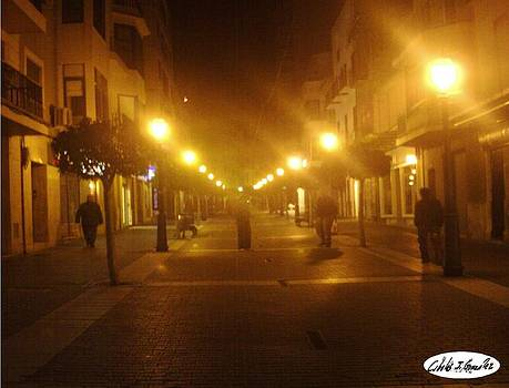 Nocturnal Inca by Cibeles Gonzalez